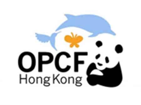 Ocean Parck Conservation Foundation Hongkong