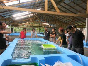 training center and aquaculture