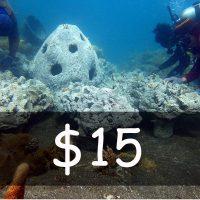 Contribute US$ 15