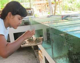 LINI's Training and Aquaculture Centre – June 2015