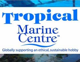 tropical marine centre globally supporting an ethical sustainable hobby