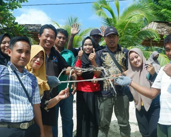 Practical Session for Banggai Cardinalfish Habitat Restoration